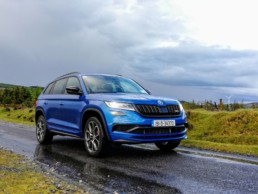The new Skoda Kodiaq RS!